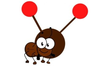 What is ant radio service